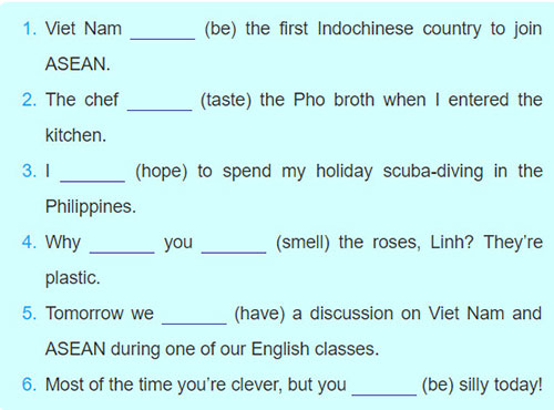 Lop-11-moi.unit-5.Language.III.-GRAMMAR.4. Use the simple or continuous form of the verbs in brackets to complete the sentences