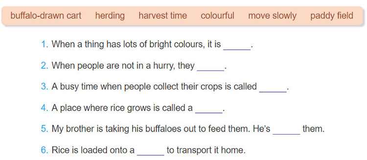 tieng-anh-lop-8-moi.unit-2.Getting-Started.1.-Listen-and-read.c. Complete the sentences with the words in the box