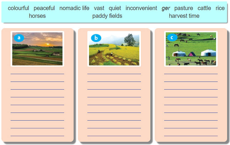 tieng-anh-lop-8-moi.unit-2.Looking Back.1. Use the words and phrases in the box to describe the pictures. Some words/ phrases may be used for more than one picture